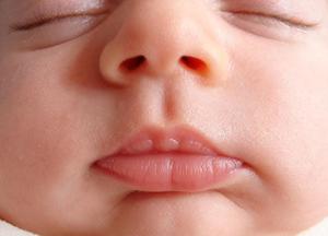 Нос новорожденного