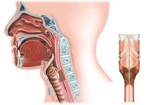 стадии болезни стеноз гортани