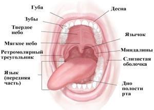 Рак горла симптомы фото