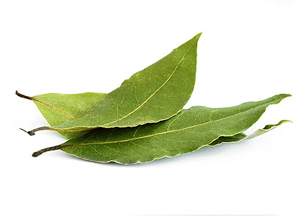 лавровый лист как средство от грибка в ушах