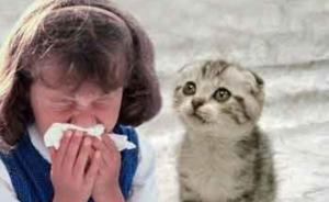 лечение аллергии у взрослых