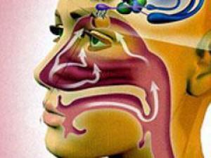 лечение гипосмии