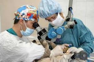 холестеатома уха лечение