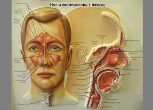 ринорея носа