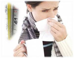 при какой температуре погибает свиной грипп