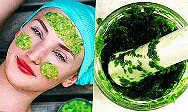 маски из зелени для лица