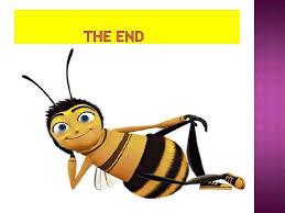 пчелиный подмор целебные свойства